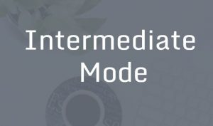 Learn Excel in Hindi Intermediate mode