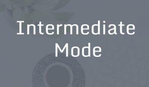 Intermediate mode learn Excel in Hindi